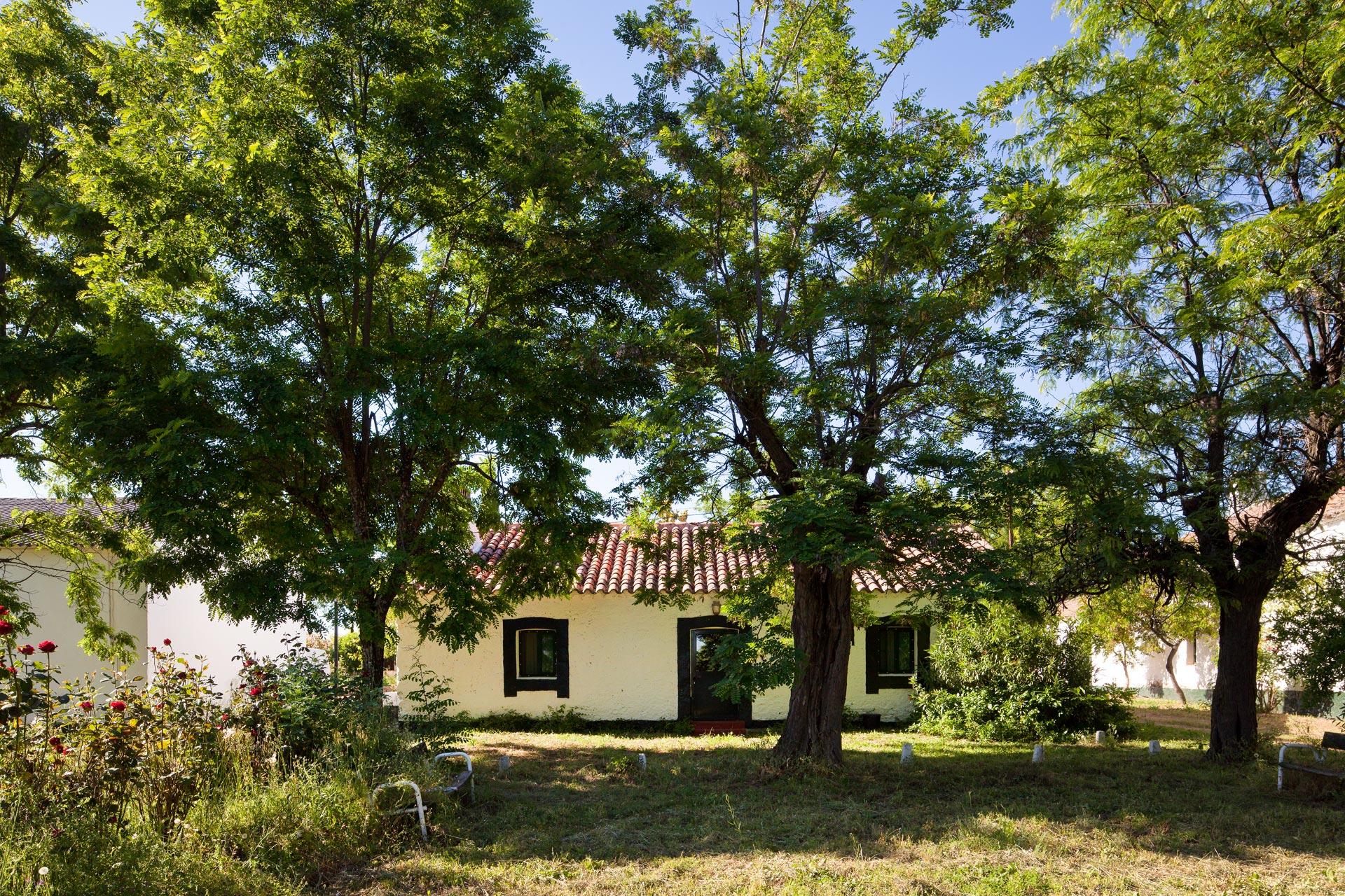 valdeazores-casa-portuguesa-img_6205