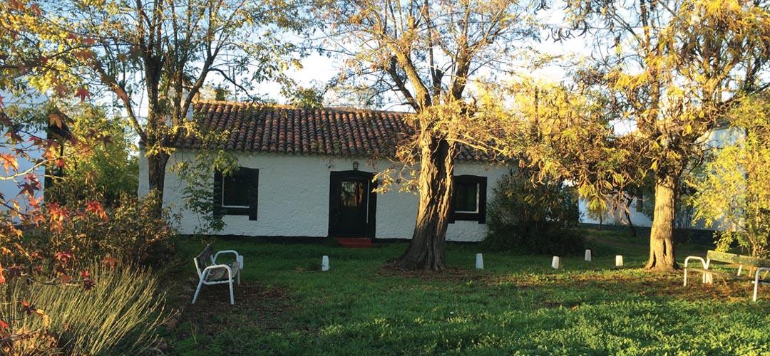 Valdeazores-Casa-Portuguesa-IMG_7505