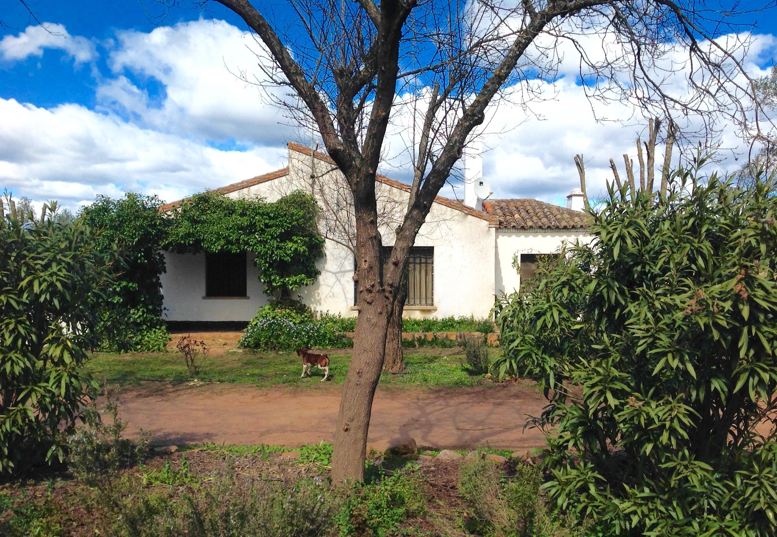 Valdeazores-Casa-olivar-IMG_5695